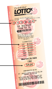 Sample FLORIDA LOTTOTicket with EZmatch